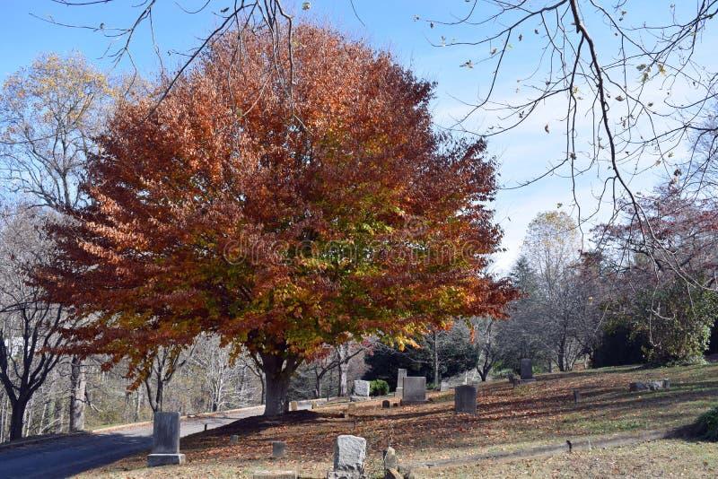 Lápides velhas do cemitério da cidade foto de stock