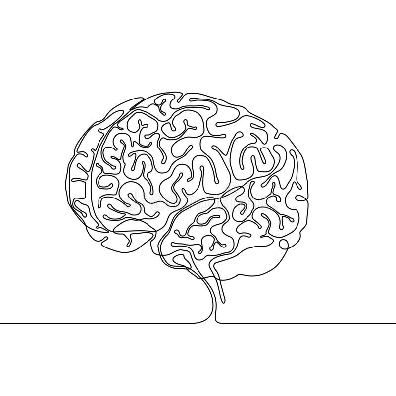 A lápis desenho contínuo de um cérebro humano com giros e sulci ilustração do vetor