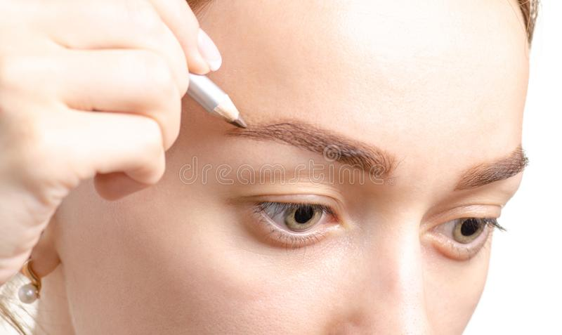 Lápiz de ceja femenino del ojo del marrón de la forma de la ceja imagen de archivo libre de regalías