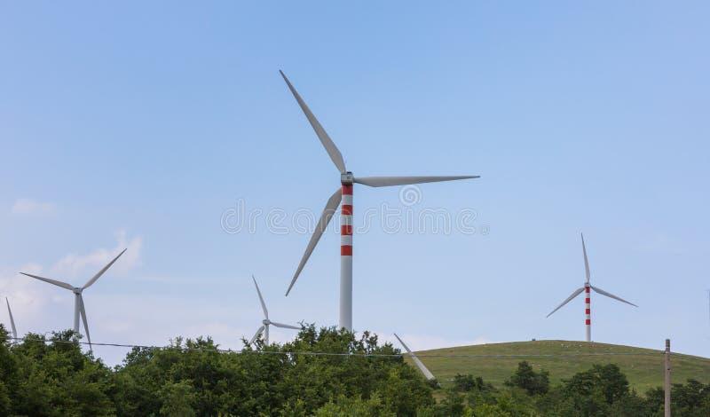 Lâminas do vento em montes doces fotografia de stock royalty free