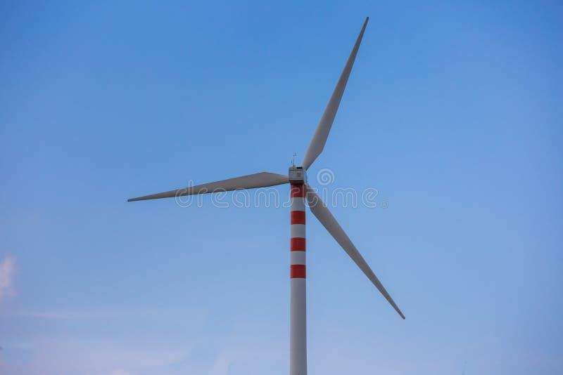 Lâminas do vento em montes doces fotos de stock royalty free