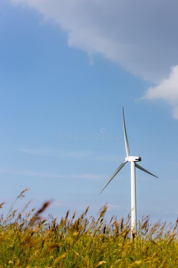 Lâminas do vento em montes doces imagens de stock
