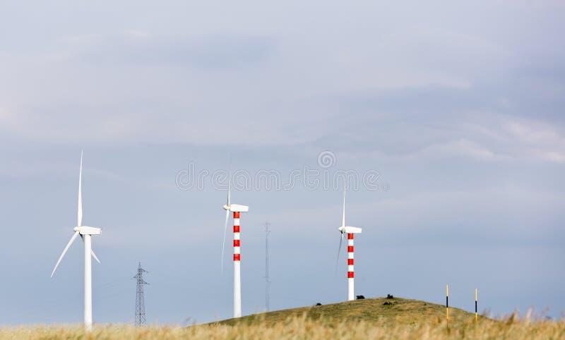 Lâminas do vento em montes doces imagens de stock royalty free