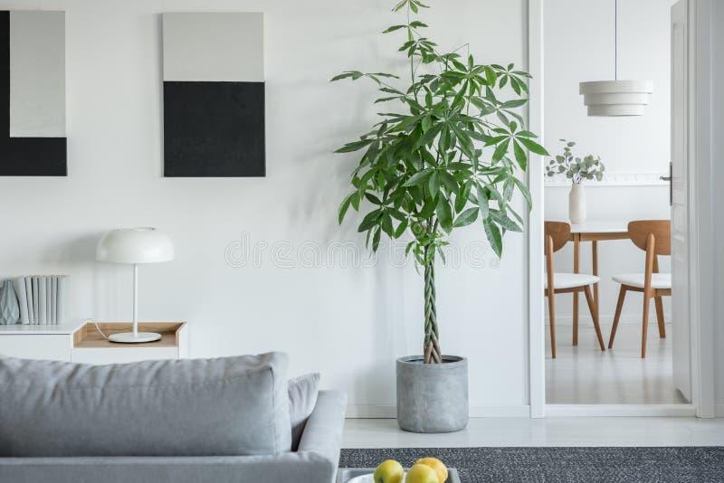 Lâmpada branca industrial na mesa de console em um interior brilhante de sala com plantas e sofá cinza confortável foto de stock royalty free