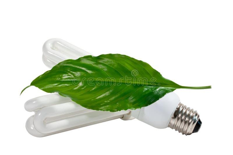 Lâmpada da economia de energia fotos de stock