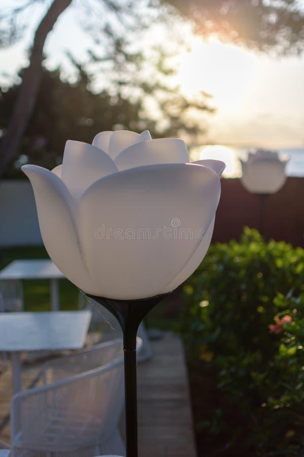 Lâmpada da flor do jardim fotografia de stock
