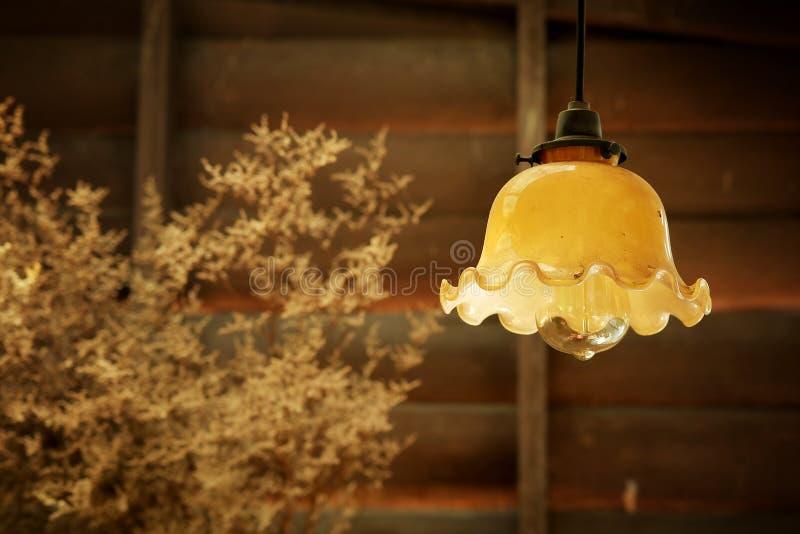 A lâmpada de suspensão retro no estilo do vintage com a parede de madeira áspera decora pelo produto de cerâmica da grama seca fotografia de stock royalty free