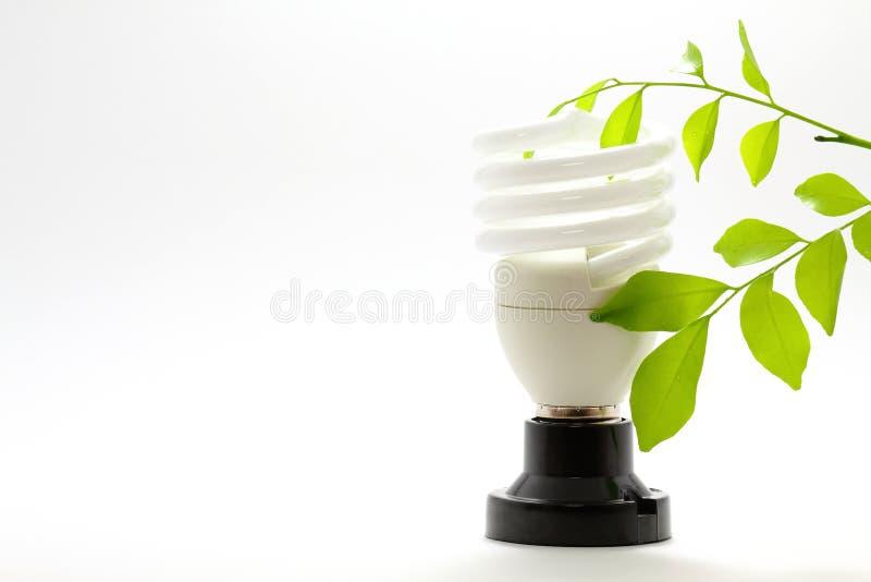Lâmpada e Eco foto de stock