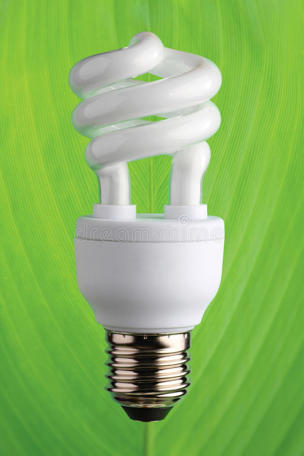 Lâmpada fluorescente compacta da economia de energia fotografia de stock royalty free