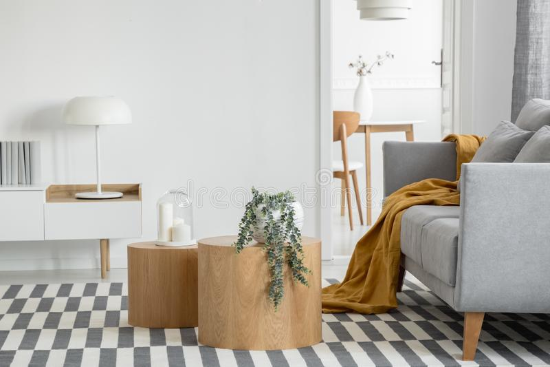 Lâmpada industrial na mesa de console em um interior brilhante de sala com plantas e sofá cinza confortável imagem de stock royalty free