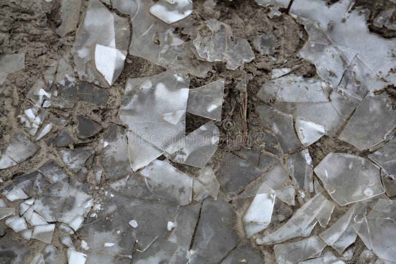 Lód na marznącej ziemi fotografia royalty free
