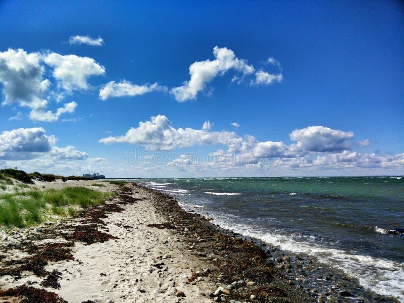 Læsø海滩 库存图片