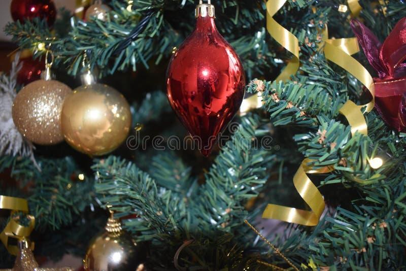 Lächeln auf Weihnachtsbaum lizenzfreies stockfoto