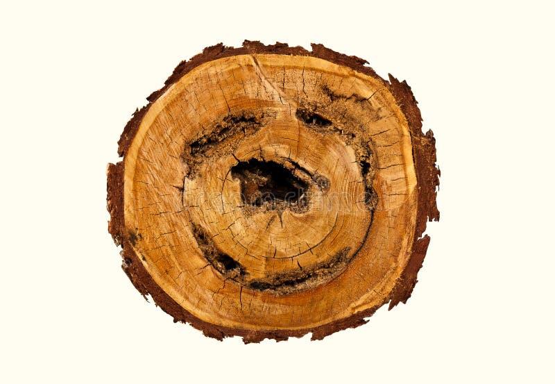 Lächeln-geformtes Protokoll des Holzes. lizenzfreie stockfotos