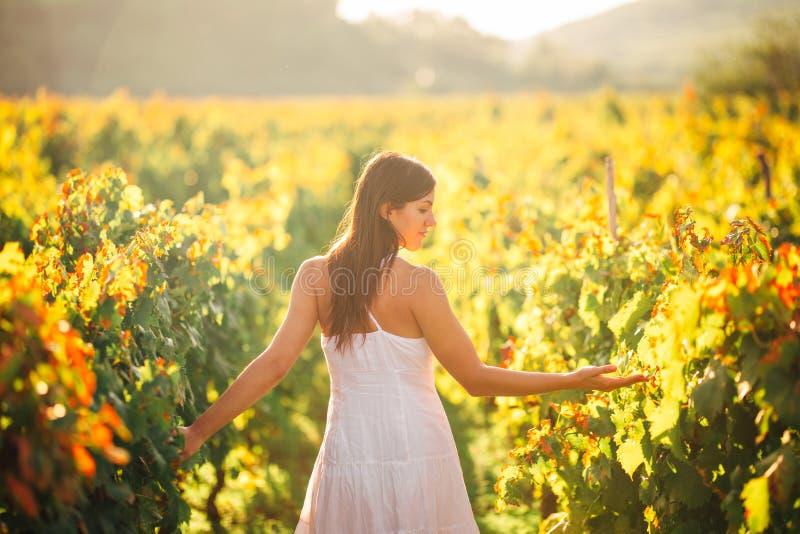 Lächelnde elegante Frau in der Natur Freude und Glück Ruhige Frau auf dem Weinrebegebiet im Sonnenuntergang Weinanbaufeld Landwir stockfotos