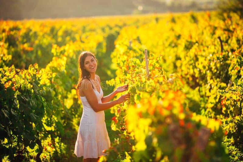 Lächelnde elegante Frau in der Natur Freude und Glück Ruhige Frau auf dem Weinrebegebiet im Sonnenuntergang Weinanbaufeld Landwir lizenzfreies stockbild