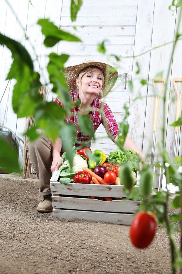 Lächelnde Frau im Gemüsegarten mit Holzkiste Gemüse lizenzfreie stockbilder