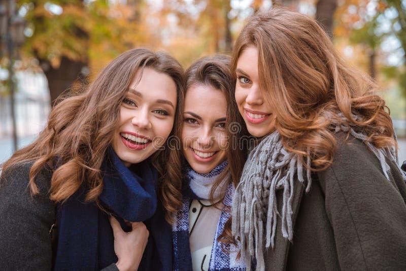 Lächelnde Freundinnen, die im Herbstpark stehen stockfotos