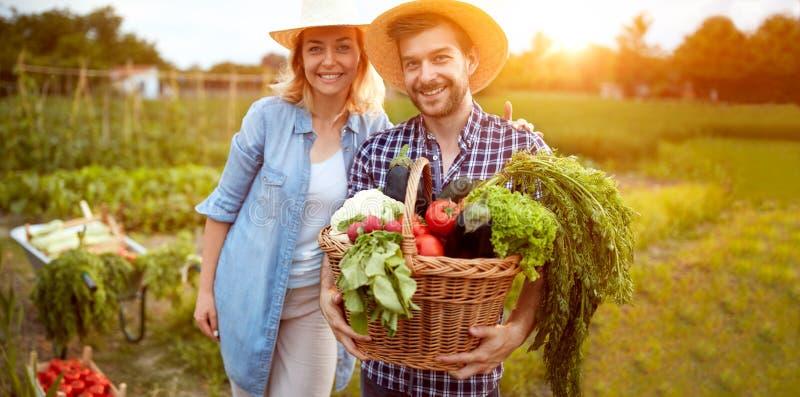 Lächelnde Landwirtpaare mit Gemüse im Korb stockfoto