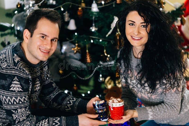 Lächelnde Paare mit Eibischschalen der heißen Schokolade lizenzfreie stockfotografie