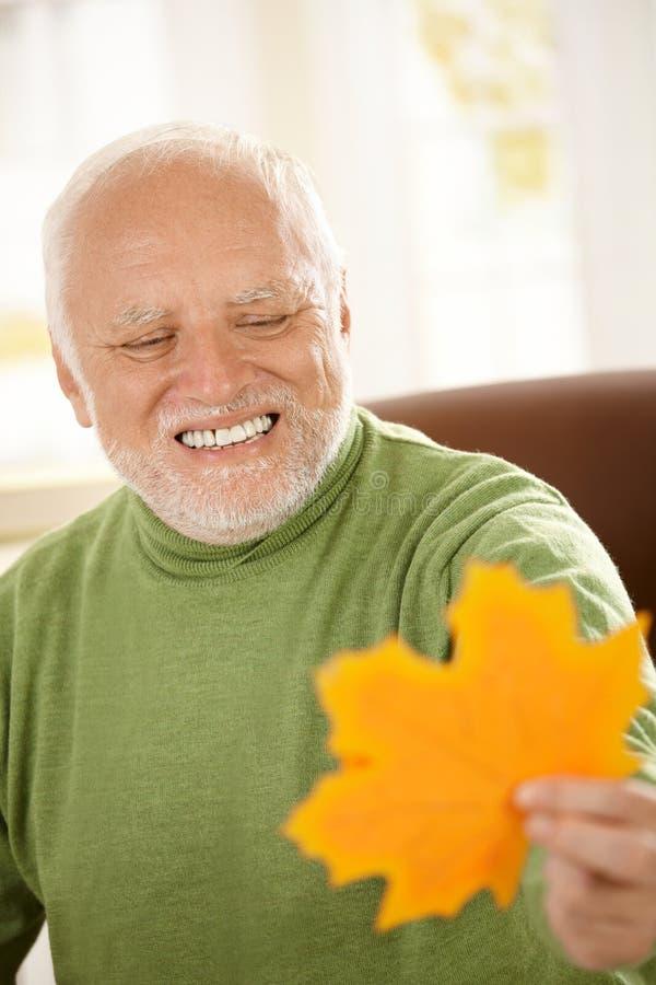Lächelnder alter Mann, der gelbes Blatt betrachtet lizenzfreie stockfotos