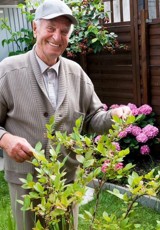 Lächelnder alter Mann in seinem eigenen Garten lizenzfreies stockbild