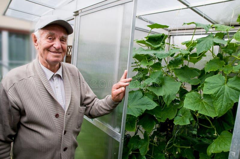 Lächelnder alter Mann in seinem eigenen Garten lizenzfreies stockfoto