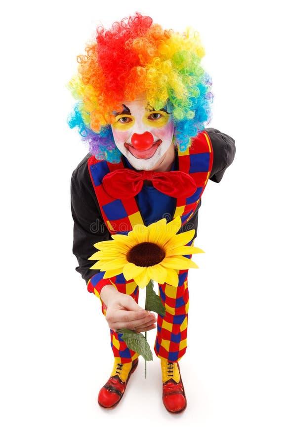Clown mit großer gelber Blume stockbild