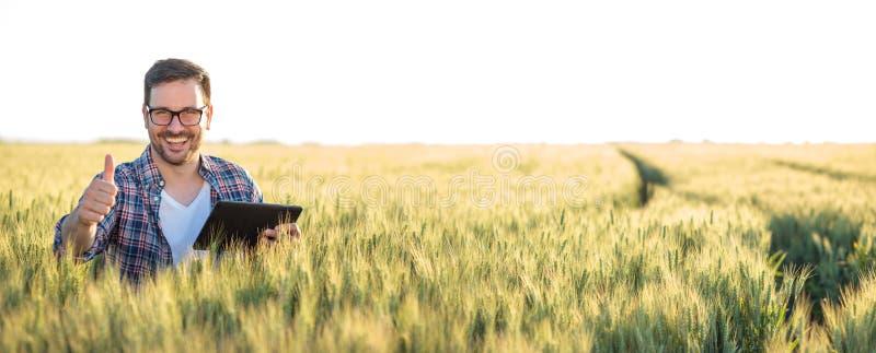 Lächelnder glücklicher junger Landwirt oder Agronom, der eine Tablette auf einem Weizengebiet verwendet Daumen-oben zeigen und di lizenzfreie stockfotos