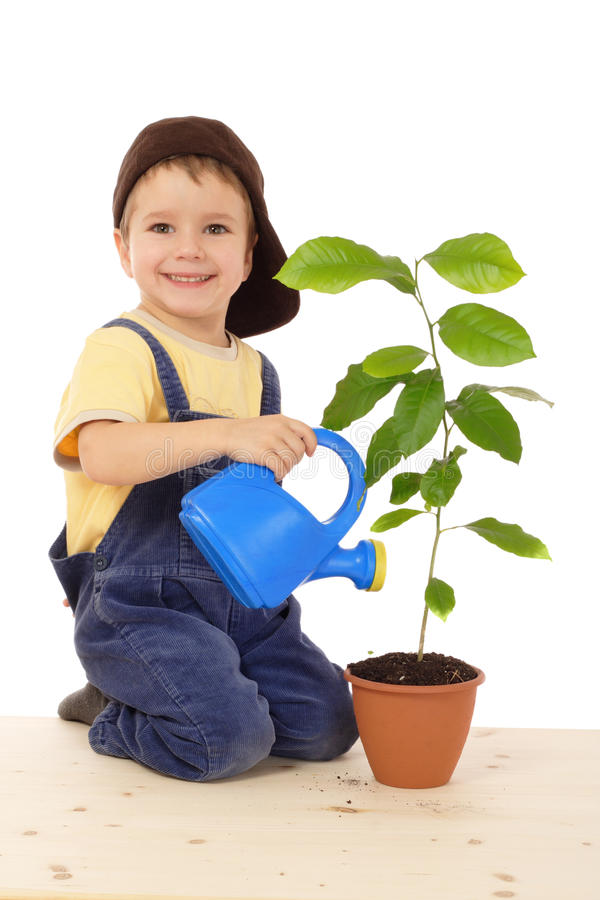 Lächelnder kleiner Junge, der die Anlage wässert lizenzfreies stockbild