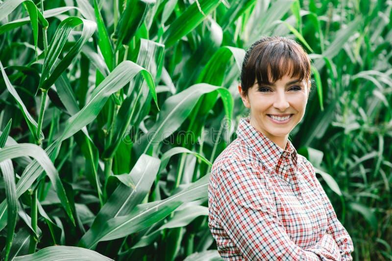 Lächelnder Landwirt, der auf dem Maisgebiet aufwirft lizenzfreies stockbild