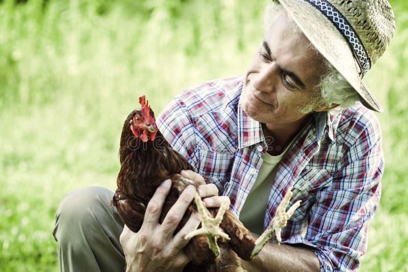 Lächelnder Landwirt, der ein Huhn hält stockbild