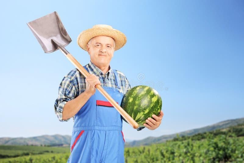 Lächelnder Landwirt, der eine Wassermelone und eine Schaufel am Feld hält stockbild
