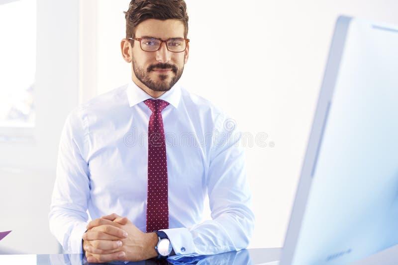 Lächelndes junges Geschäftsmannporträt stockbilder