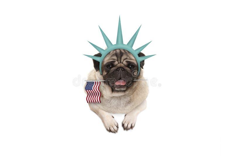 Lächelndes Pughündchen, das amerikanische Flagge, hängend an der weißen Fahne, tragende Krone Dame Freiheit hält lizenzfreie stockfotos