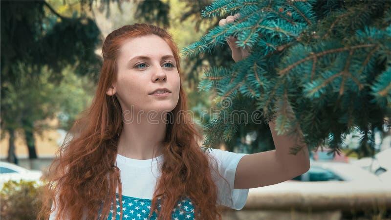 Lächelndes schönes Ingwermädchen im Koniferenpark stockbild