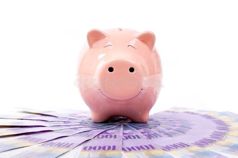 Lächelndes Sparschwein mit Banknoten der Schweizer Franken - die Schweiz-Cu stockfotografie