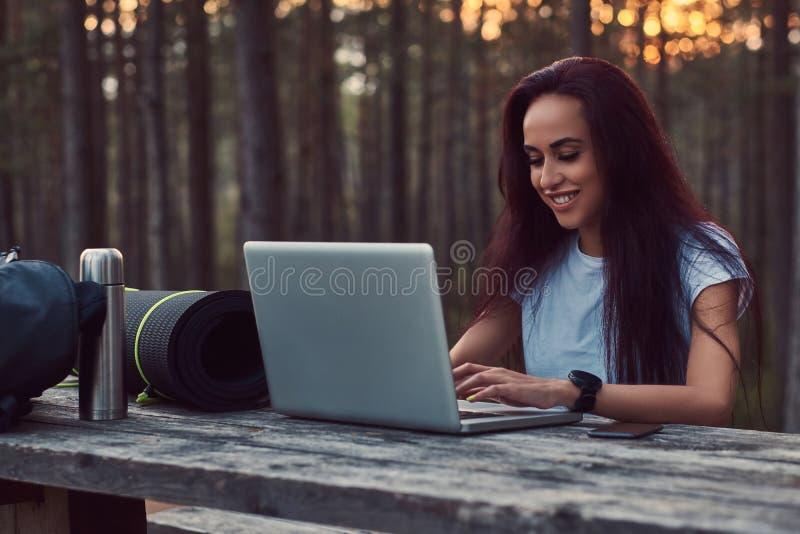 Lächelndes touristisches Hippie-Mädchen im weißen Hemd, das an einem Laptop beim Sitzen auf einer Holzbank im schönen Herbst arbe stockfotografie