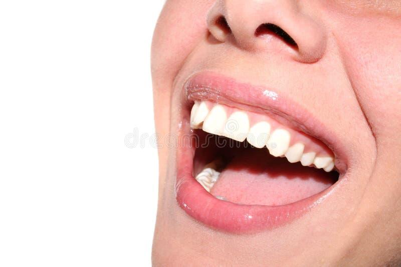 Lächelnmädchen stockfoto
