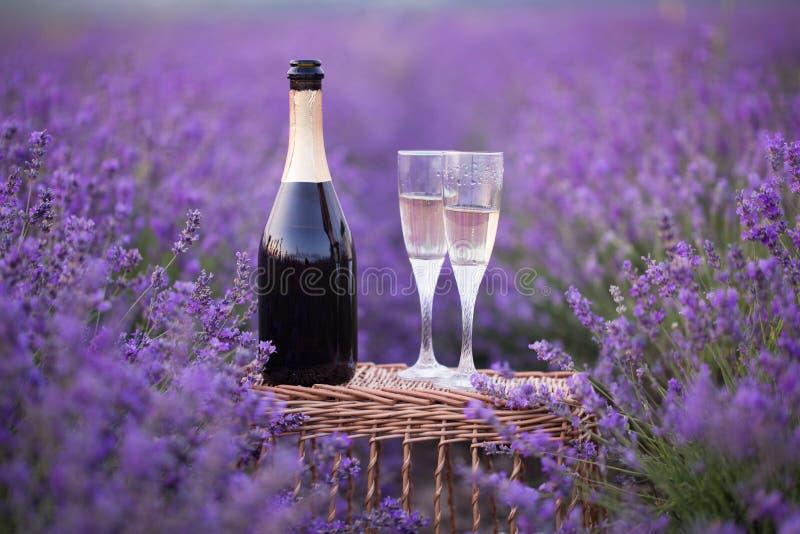 Läcker champagne över lavendel arkivbilder