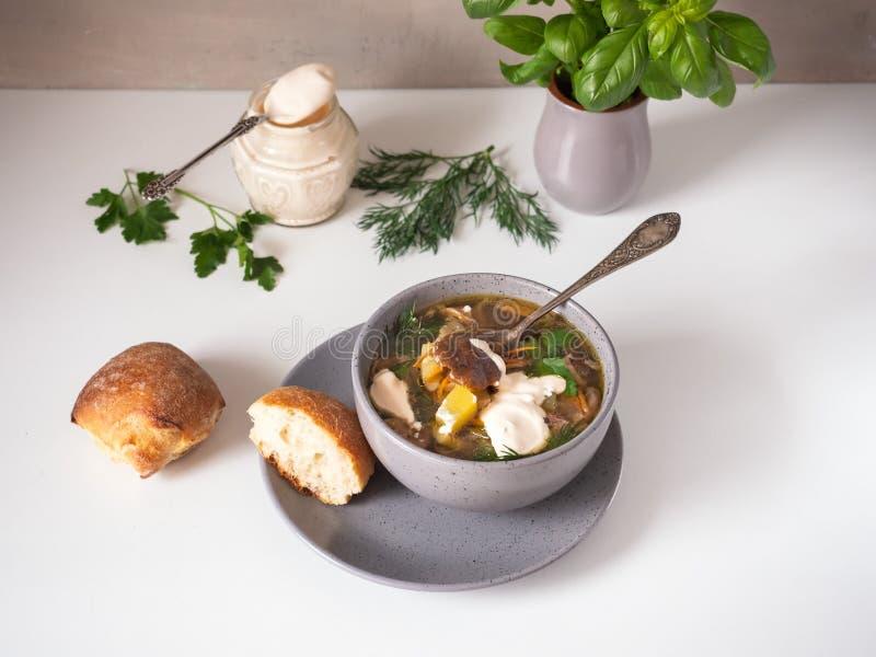 Läcker champinjonsoppa i en djup platta med gräddfil och kryddiga örter, brutna stycken av bröd på en vit tabell royaltyfri fotografi