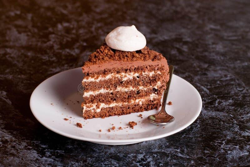 Läcker chokladkaka i den vita plattan royaltyfri foto