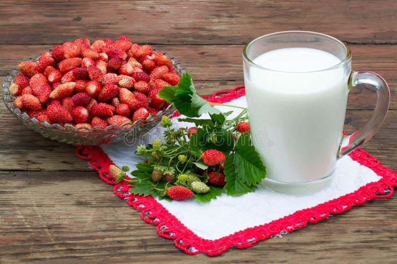 Läcker frukost: en bunke av mogna jordgubbar och koppen av mjölkar arkivfoto