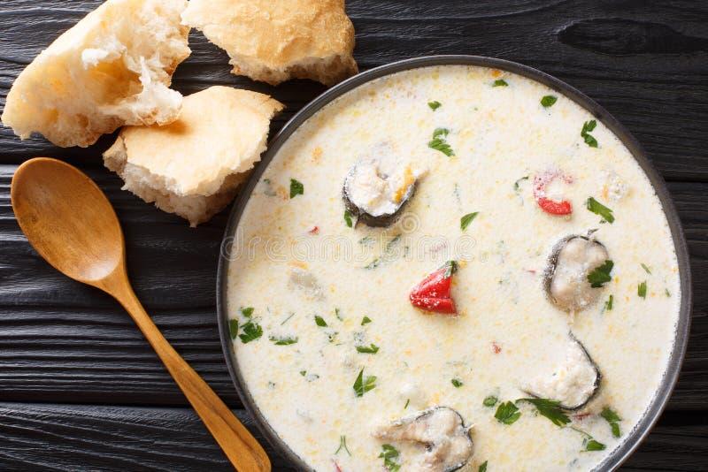 Läcker krämig fisksoppa med ålen, ost och grönsaknärbild i en bunke horisontalb?sta sikt fotografering för bildbyråer