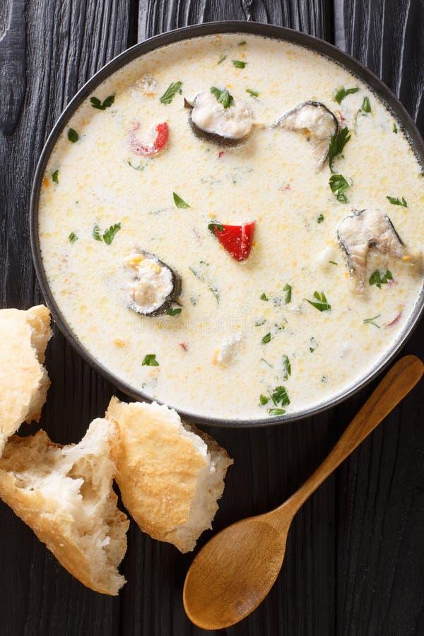 Läcker krämig fisksoppa med ålen, ost och grönsaknärbild i en bunke Vertikal b?sta sikt royaltyfria foton