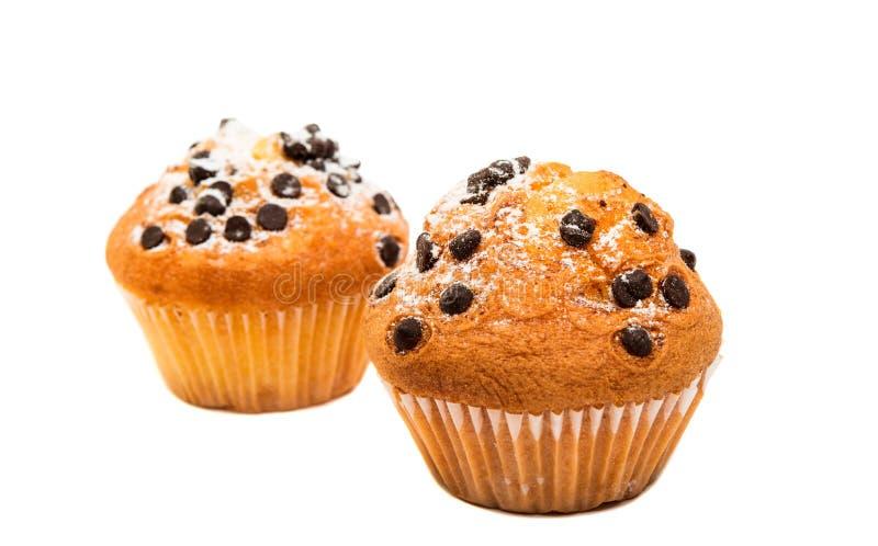 läcker muffin för choklad fotografering för bildbyråer