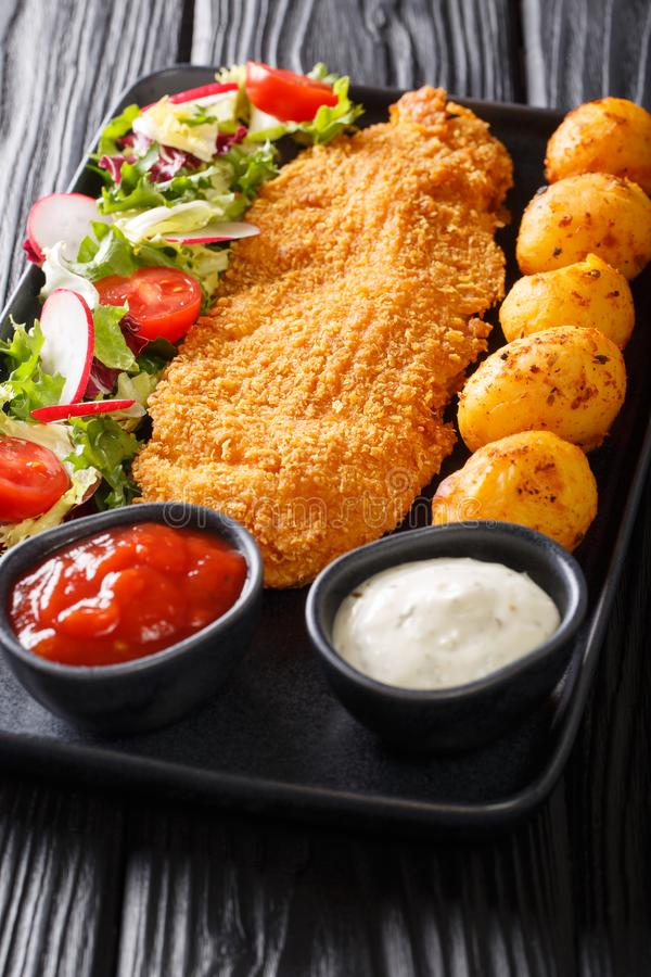 L?cker stekt fil? av den vita fisken, i att panera med en sidomatr?tt av nya potatisar och salladn?rbilden f?r ny gr?nsak vertika fotografering för bildbyråer
