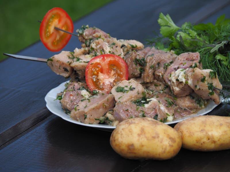 Läckert kött i en marinad med smaktillsatser och tomater arkivbilder