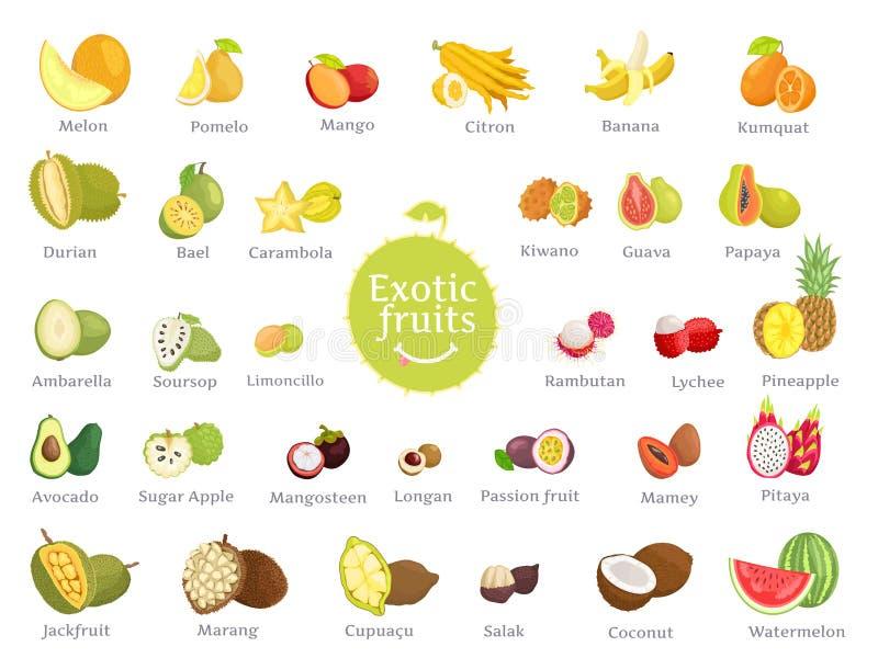 Läckra exotiska frukter mycket av den stora uppsättningen för vitaminer stock illustrationer