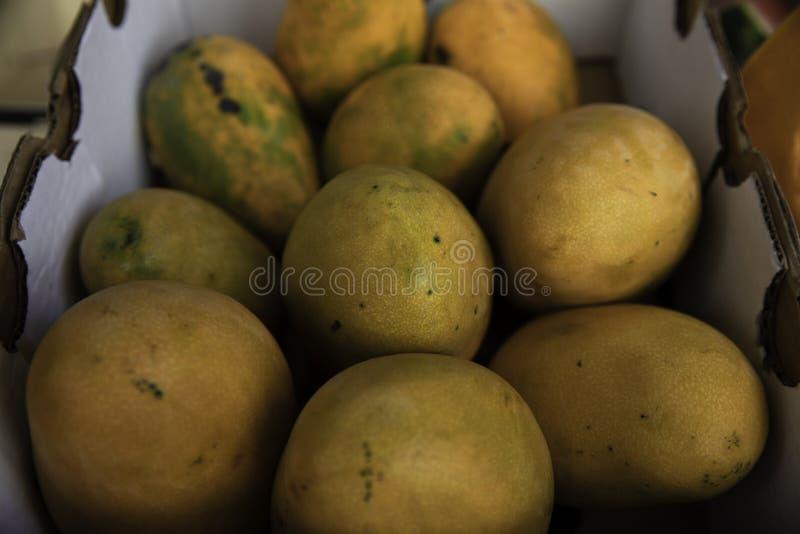 L?ckra mango i en fruktaff?r fotografering för bildbyråer